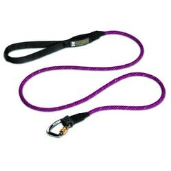 dog travel leash