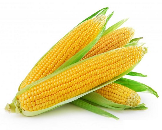 corn for dogs
