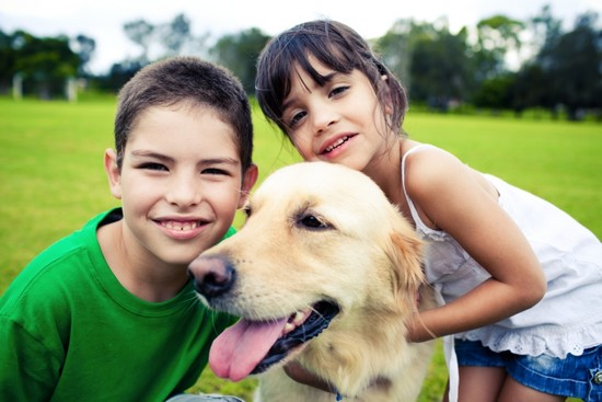 How should you deal with family pets and children