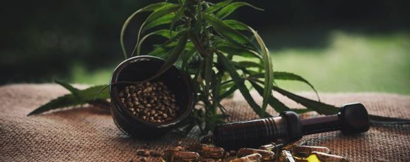 Benefits of CBD Oil to Your Pet Dogs