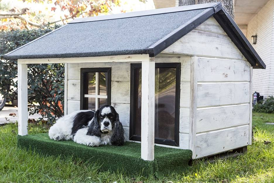 a good dog house
